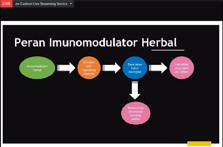 imunomodulator