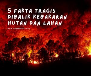 5 Fakta Tragis Dibalik Kebakaran Hutan dan Lahan